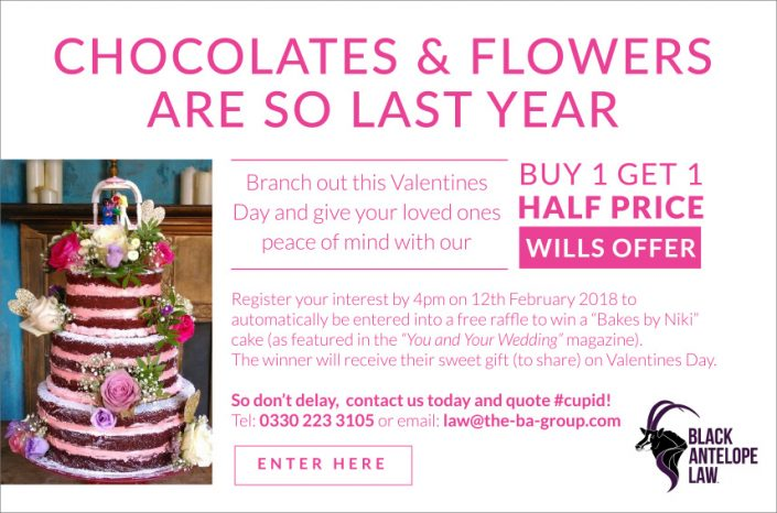 Valentines Day Will Promotion